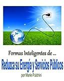 Formas Inteligentes de Reducir su Energía y Utilidad Libro Bills (ilus)