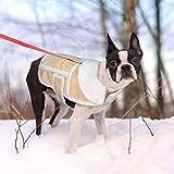 Namsan Dog Warmer Mantel, Hundejacke, Winter Hundebekleidung für kleine Hunde