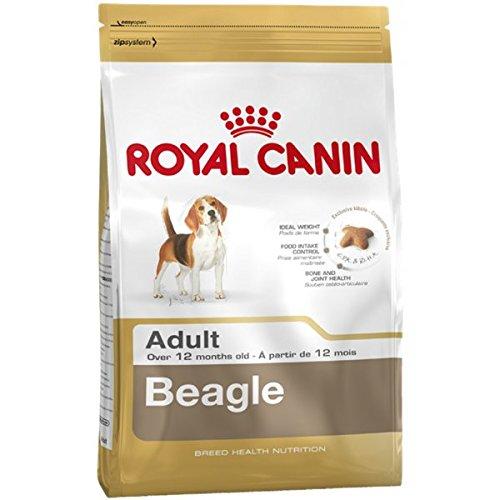 Royal Canin Beagle Adult 12 kg, 1er Pack (1 x 12 kg)