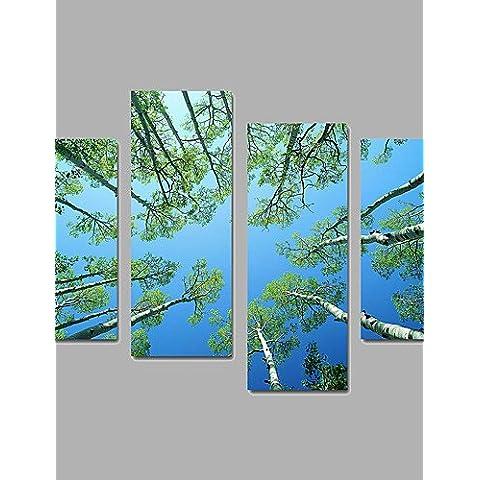 XM Unframed Stampa trasferimenti su tela Paesaggi