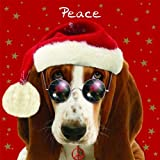 Weihnachtskarte - Cool Yule - Peace - Basset Hound