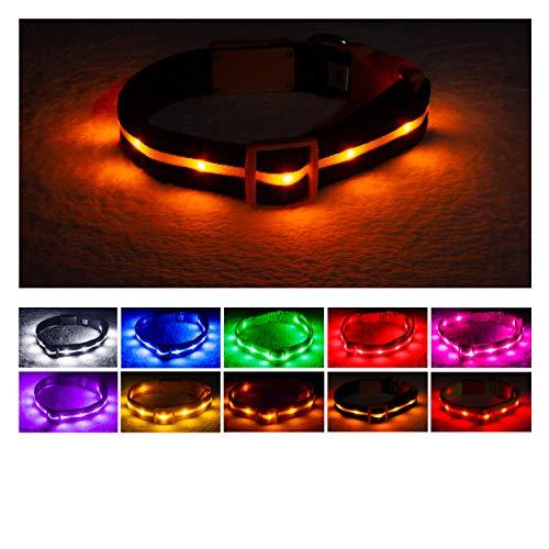 Blazin' Sicherheits-LED-Hundehalsband, wiederaufladbar, über USB aufladbar, wasserfestes Blinklicht, Large, Halloween