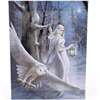 Fantastic Anne Stokes Design - Midnight Messenger - A Gothic Druid / Angel with White Owls Canvas Picture on Frame Wall Plaque / Wall Art by ANNE STOKES