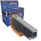 1x Druckerpatrone Kompatibel für Epson Expression Premium XP-640 Series XP-530 XP-830 XP-645 XP-540 XP-900 XP-630 Series XP-635 Drucker Tinte Patrone für Epson 33XL 33 XL T3361 Photo Schwarz Black BK