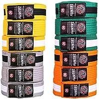 Tatami Fightwear kidsibjjfbelts-0027 IBJJF Kids Rank Cinturones, Unisex Adulto, Naranja, M4