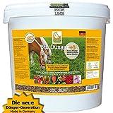 HORSiT Biodünger Pferdemist Pellets 30 l Naturdünger geruchsarm. Dünger für Gemüse, Obst und Zierpflanzen. Langzeitdünger Volldünger