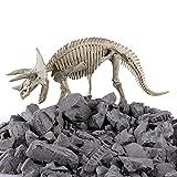 YAHAMA Archäologie für Kinder Ausgrabung Dinosaurier Spielzeug Dinosaurier...