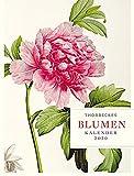 Thorbeckes Blumen-Kalender 2020 -