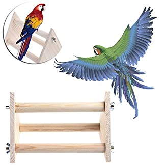 Dairyshop Parrot Bird Triangle Wooden Perch Cage Stand Play Toys Gym Activity Table Top 5158PDLB5oL