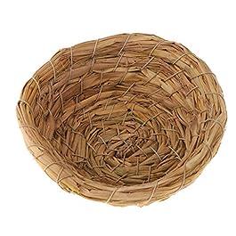 Fenteer Birdhouse dell'uccello dell'erba Dell'erba Tessuta/Casa di Riproduzione Addormentata per Colomba di Rondine