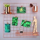 "Rumcent Mesh Grid Panel,Wall Decor/ Photo Wall/Wall Art Display/Organizer,Memo Board Wall Art Decor/Display&Organizer-Rose Gold (23.6""L x 23.6""W)"