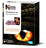 Picture Of Dig & Excavate a T-Rex Dinosaur Skeleton Bones - Prehistoric Activity Kit - Number 1 Discovery - Jurassic Fun Present Gift Ideal For Christmas Xmas Stocking Fillers Age 8+ Boys Boy Child Kids Children
