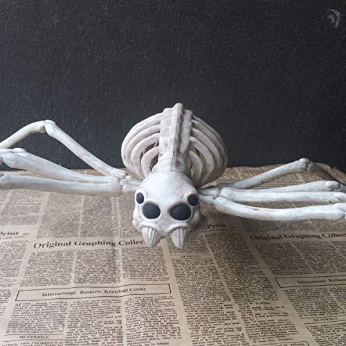 FXQ Tier Skelett Knochen Modell - Skelett Eule Horror Halloween Weihnachten Prop Tier Horror House Party Dekoration - Simulation Tier Eule für Kinder Spielzeug Geschenk,Spider -