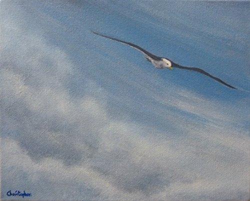 gaviota-en-vuelo-pintura-original-de-aves-acrilico-25cm-x-20cm-aves-marinas-que-se-deslizan-en-un-ci