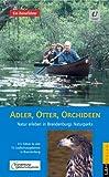 Adler, Otter, Orchideen: Natur erleben in Brandenburgs Naturparks