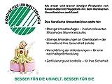Hoppekids BASIC-A4-38-3 My Color Halbhochbett, Spiel-/Junior-/Kinder-/Jugendbett, Kiefer massiv, 4 Farben Liegefläche 70 x 160 cm, Holz, rosa, 168 x 81 x 105 cm - 3