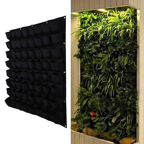 Grüne Wand Raffinierter Blickfang Für Die Wohnung Bauen De