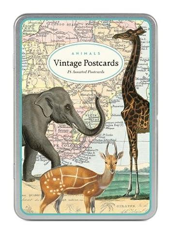 Cavallini Co. Postkarten &Tiere in Blechschachtel, sortiert, 18 Stück