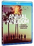 Animal Kingdom Temporada 1 Blu-Ray España