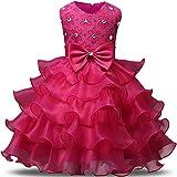 NNJXD Robe de Filles Gamins Volants Dentelles Robes de Mariage pour Les Parties Taille(80) Couleur Rose pour Les Filles de 9-12 Mois