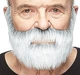 Barba gris y blanca estilo noble
