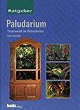 Paludarium: Tropenwald im Wohnzimmer - Ratgeber