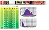 Exo Terra Reptile UVB200 Wüsten-Terrarien-Leuchtstoffröhre 18 Watt
