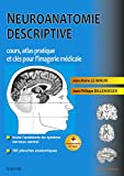 Neuroanatomie descriptive: Bases morphologiques et clés pour l'imagerie médicale