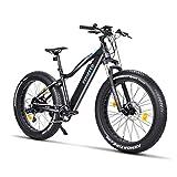 Fitifito FT26 Elektrofahrrad Fatbike E-Bike Pedelec, 36V 250W Heckmotor, 36V 13Ah 468W Samsung Akku, Kenda 26 x 4,0 MTB Reifen Vergleich