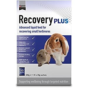 Supreme Science Recovery Plus - 10x 20 g