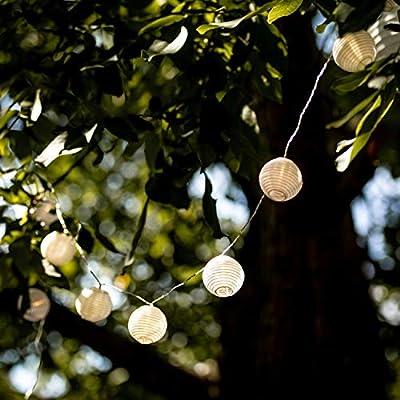 LED Lampion Lichterkette - 5,5 Meter | Mit Netzstecker NICHT batterie-betrieben | 15 LEDs warm-weiß | Kein lästiges austauschen der Batterien | LED Lampions von CozyHome von Cobus Company