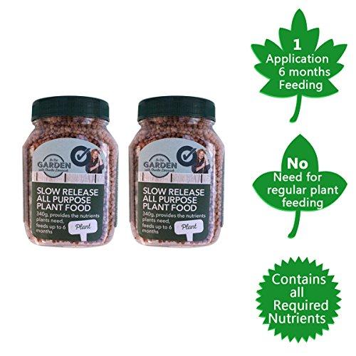 liberacin-lenta-planta-feed-para-plants-granules-la-liberacin-de-nutrientes-de-alimentos-y-potasio-c