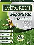 Best Grass Seeds - EverGreen Grass Seed 2KG Review
