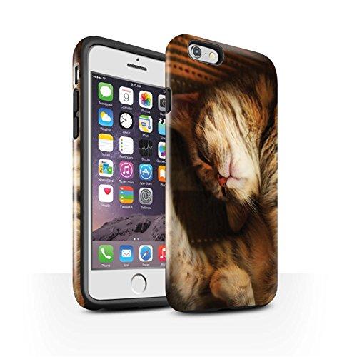 Officiel Elena Dudina Coque / Brillant Robuste Antichoc Etui pour Apple iPhone 6S / Endormi/Tigré Chat Design / Les Animaux Collection Endormi/Tigré Chat