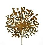 Blumenstecker Allium