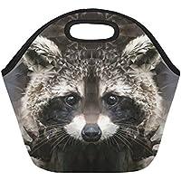 Preisvergleich für InterestPrint Raccoon Lunchbox/Lunchbox, wiederverwendbar, isoliert, Neopren, 29,2 x 29,2 x 17,3 cm, Wildlife Animal