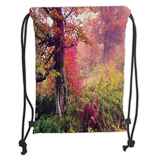 GONIESA Drawstring Sack Backpacks Bags,Farm House Decor,Fairy Majestic Landscape with Autumn Trees in Forest Natural Garden in Ukraine,Red Green Brown Soft Satin,5 Liter Capacity,Adjustable STR -