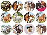 12 Stück Muffinaufleger Muffinfoto Aufleger Foto Bild Pferd Horses Dream rund ca. 6 cm (11) *NEU*OVP*
