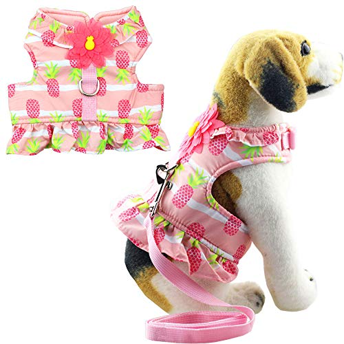 Bolbove Hundegeschirr und Leine für Katzen und Kleine Hunde, X-Small, Pink, Green, red -