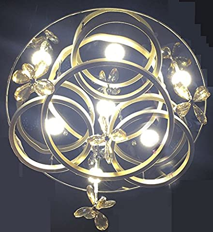 Eplazalighitng Ceiling Lights 19. 5