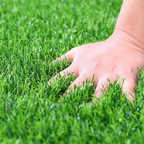 YEYE Kunstrasen Fußmatte,18mm Indoor Outdoor Grün Rasen Teppich Pet Turf Für Hunde Pee Pad Synthetische Gras Tür Matte Gefälschte Gras Teppich-grün 100x150cm(39x59inch) (Matte Gras Pet)