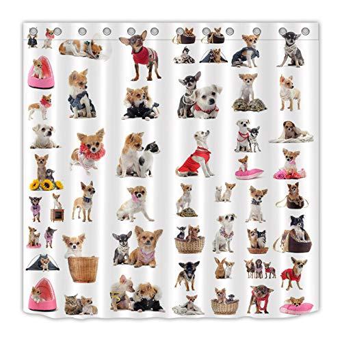 hdrjdrt Cute Chihuahua Duschvorhang Bad Vorhang Dekoration wasserdichtes Gewebe Dusche Bad Dekoration -