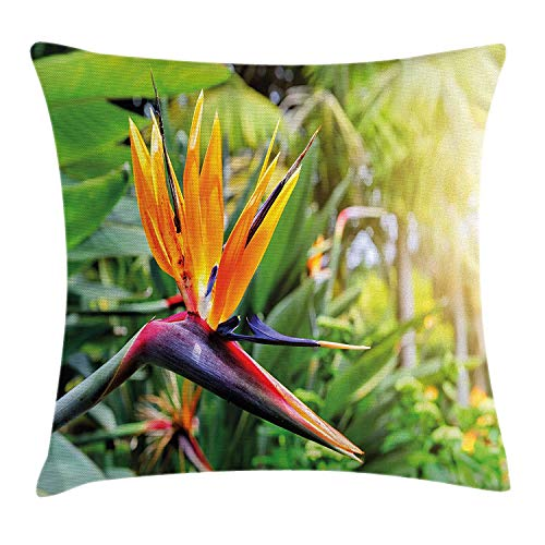 Plant Throw Pillow Cushion Cover, Close-up Image of Strelitzia Reginae Bird of Paradise Flower Madeira Island Portugal, Decorative Square Accent Pillow Case, 18 X 18 inches, Multicolor