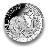 Moneda de Plata Elefante Somalia-African Wildlife-1onza Plata de ley-Envase en monedas Cápsula Individual