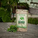 Minigarten Minze 'Cinderella' von den Stadtgärtnern  Komplettes Anzuchtset für frische Minze  Gesiebte Erde, bestes Saatgut & eine ausführliche Anleitung