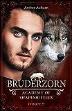 Bruderzorn, Episode 22 - Fantasy-Serie (Academy of Shapeshifters) Bild