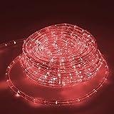 ECD Germany 20m 25W LED Tubo Flessibile Corda 36 LED/m CA 220-240V Rosso 1675 Lumen Luci Decorazione Interno Esterno