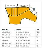 Ruffwear Schwimmweste für Hunde, Mittelgroße Hunderassen, Größenverstellbar, Größe: M, Blau, Float Coat, 45102-409M - 3