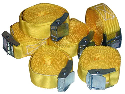 Timtina 6 Stück Spanngurte Klemmschloss Befestigungsriemen Spanngurt mit Schnellverschluss (6)