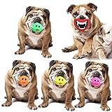 Seagullsfly Hundespielzeug, lustiges Quietschelement für Hunde, Schweinchen, Nasengeräusche